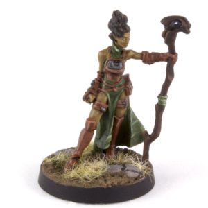 Wild Elf Druid